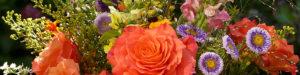 Blüten & Blumen – Vierjohreszyte – Bistro, Blüten und mehr...